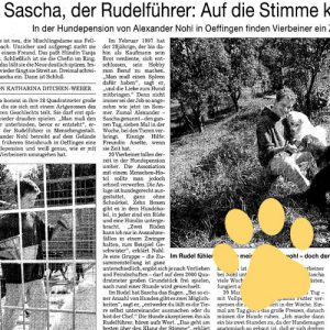 Fellbacher Zeitung Pfote 1 300x300 - Presse